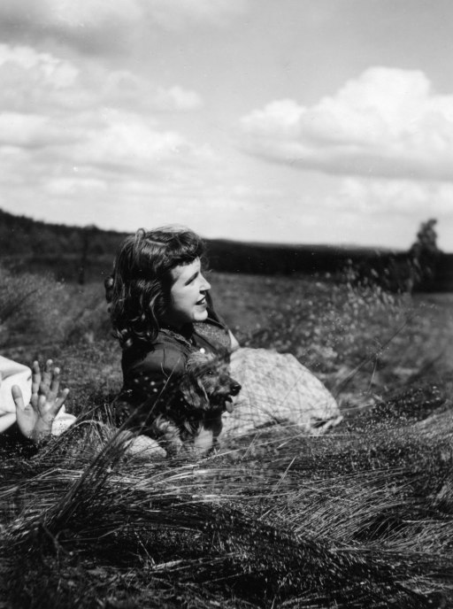 Len on Luneburg Heath, 1949.  Looking towards the Russian Border