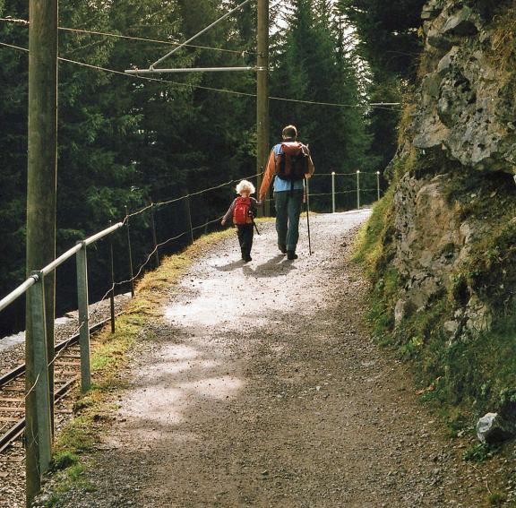 The path to Morren  Photo  Pete Grafton